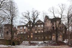 Castillo francés de Swiny en Polonia Imagen de archivo