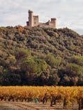 Castillo francés du más jonquier, Gard, Fotos de archivo libres de regalías