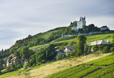 Castillo francés y viñedos franceses foto de archivo