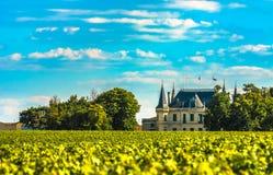 Castillo franc?s y vi?edo en Margaux, Burdeos, Francia foto de archivo libre de regalías