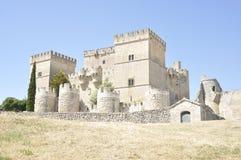 Castillo gótico del estilo Foto de archivo