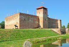 Castillo - Gyula Imágenes de archivo libres de regalías