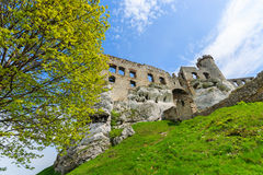 Castillo hermoso en Ogrodzieniec cerca de Kraków en la primavera, Polonia Foto de archivo