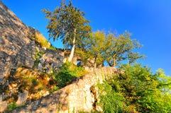 Castillo Hohen Gundelfingen Foto de archivo