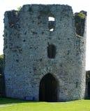 Castillo Irlanda del ajuste Fotografía de archivo libre de regalías
