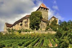 Castillo Lichtenberg Fotografía de archivo