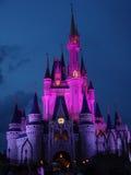 Castillo mágico en la noche Imágenes de archivo libres de regalías