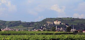 Castillo medieval antiguo de SOAVE cerca de VERONA Foto de archivo libre de regalías