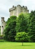 Castillo medieval de la lisonja en el corcho del Co Corcho - Irlanda Imágenes de archivo libres de regalías