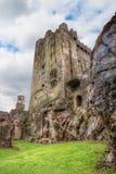 Castillo medieval de la lisonja en el corcho del Co. - Irlanda. Fotografía de archivo