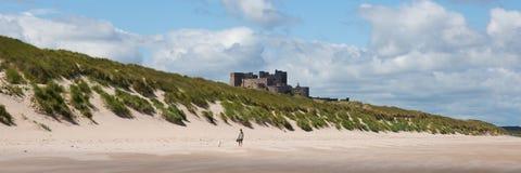 Castillo medieval por una playa Bamburgh Northumberland Inglaterra del norte Reino Unido con la opinión panorámica de la arena bl fotografía de archivo