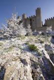 Castillo portugués Imágenes de archivo libres de regalías
