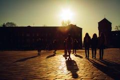 Castillo real de Wawel Fotos de archivo libres de regalías