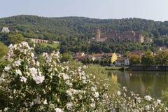 Castillo romántico de Heidelberg imagen de archivo