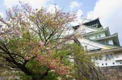 Castillo Sakuta de Japón fotos de archivo libres de regalías