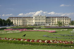 Castillo Schönbrunn Foto de archivo