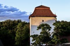 Castillo silesio de Ostrava Imagen de archivo