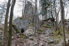 Castillo STARY HRAD, Eslovaquia Fotografía de archivo libre de regalías