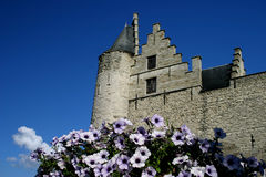 Castillo viejo Imagen de archivo
