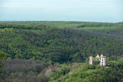 Castillo viejo en una colina en el bosque Fotos de archivo libres de regalías