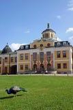 Castillo Weimar del belvedere Fotografía de archivo libre de regalías
