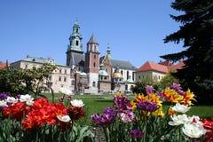Castillo y jardín de Wawel Fotografía de archivo