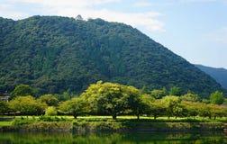 Castillo y montaña de Iwakuni Imagenes de archivo