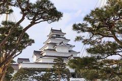Castillo y pino de Tsuruga Imagenes de archivo