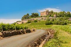 Castillo y viñedo, Beaujolais, Francia de Montmelas Fotografía de archivo libre de regalías