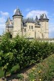 Castillo y viñedo en Francia (región de Loire) imagenes de archivo