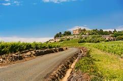 Castillo y viñedos, Beaujolais, Francia de Montmelas Fotos de archivo libres de regalías