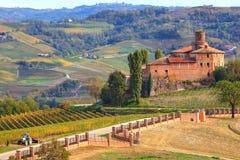 Castillo y viñedos viejos en Piamonte, Italia. Imagen de archivo libre de regalías