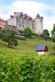 Castillo y viñedo de Gruyeres Imagen de archivo libre de regalías
