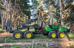 Green forest forwarder in pine forest