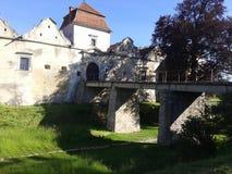 Castillos de Lviv Fotos de archivo