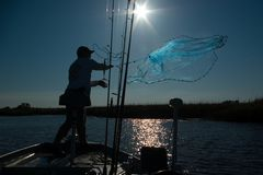 Casting for Bait. A sunlit fisherman casts his net to catch bait for this morning's fishing Royalty Free Stock Photos