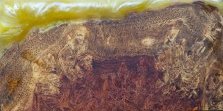 Casting epoxy resin Stabilizing Afzelia burl exotic wood red yellow background, Abstract art picture photo, print design and your royalty free stock photos