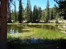 Castle湖池塘 库存图片