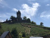 Castle και αμπελώνες στοκ φωτογραφίες