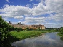 Castle ο λευκός Κύκνος Στοκ Εικόνες