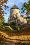 Castle σε Cesis Στοκ Φωτογραφίες