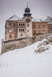 Castle σε Pieskowa Skala (Πολωνία) Στοκ Φωτογραφία