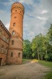 Castle σε Raudone Στοκ Εικόνες