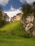 Castle στην Πολωνία στοκ εικόνες