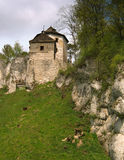 Castle στην Πολωνία στοκ εικόνα με δικαίωμα ελεύθερης χρήσης