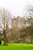 Castle. View of Blarney castle, Ireland Royalty Free Stock Image