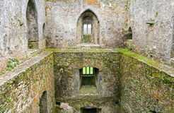 Castle. Inside the Blarney castle, Ireland Royalty Free Stock Image
