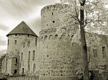 Castle. Royalty Free Stock Images