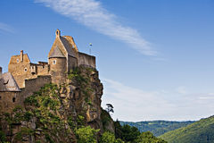 Castle Aggstein in Austria Royalty Free Stock Image