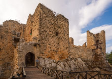 The castle of Ajloun Stock Images